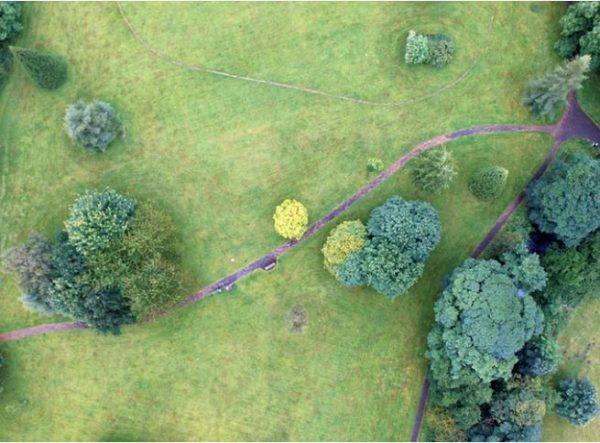 The Complete Guide to Disc Golf Courses in Cincinnati