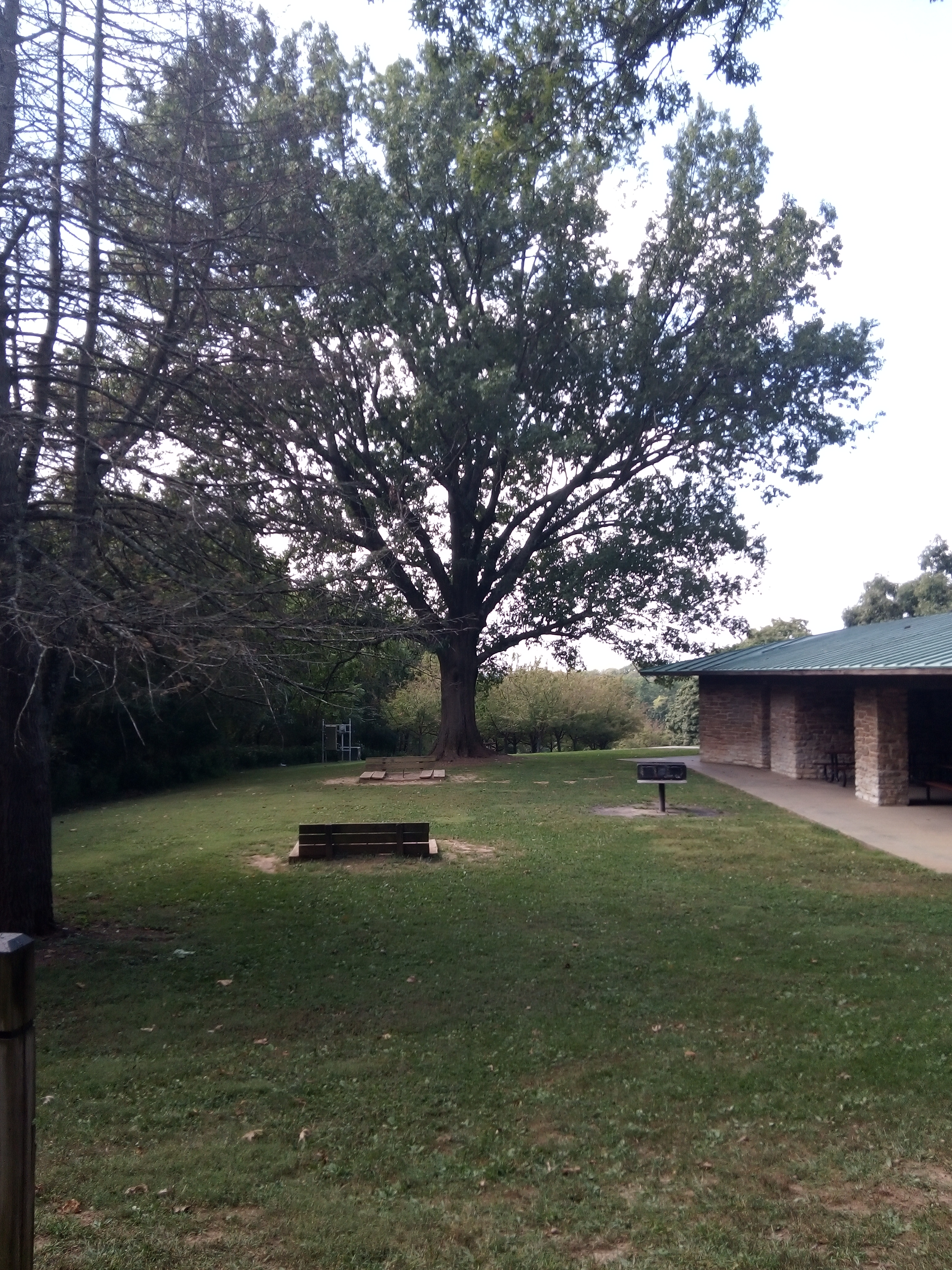Picnic shelter in French Park