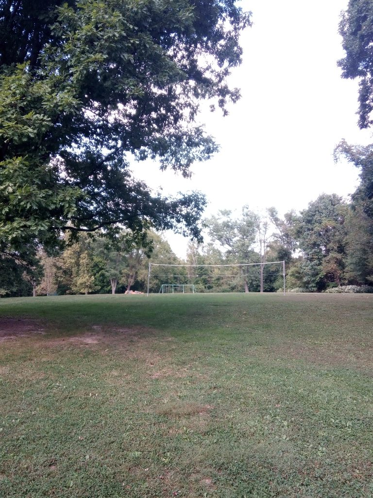 Volleyball net in French Park