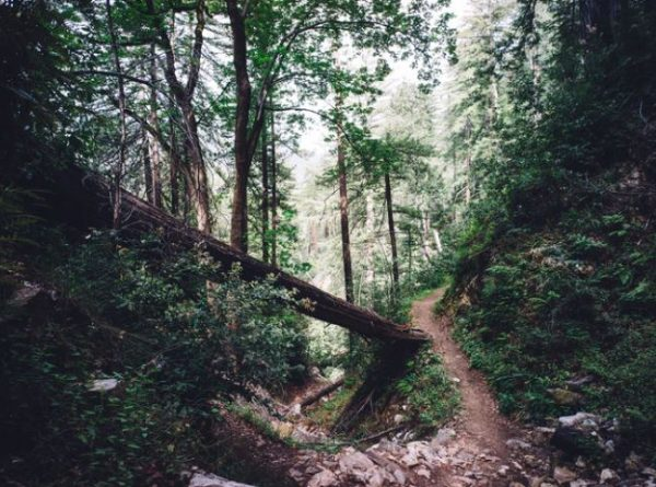 Why French Park is One of Cincinnati's Best Hiking Spots