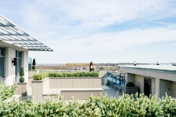 The 16 Best Rooftop Bars to Check Out in Cincinnati