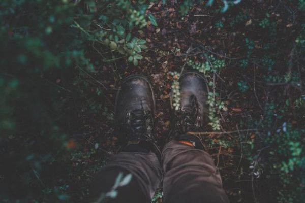 The 12 Best Hiking Spots in Cincinnati