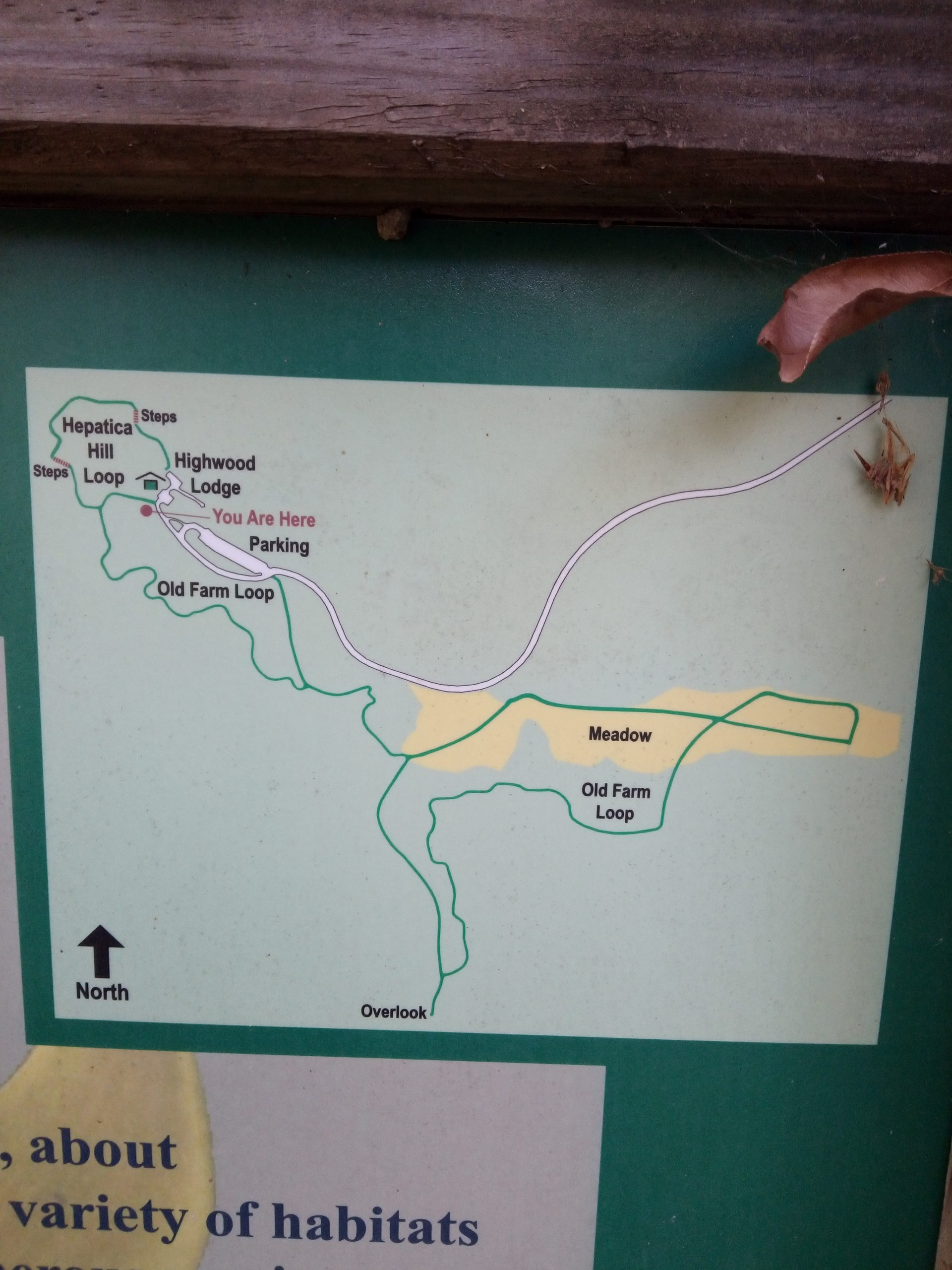 Trout Lily Nature Trail map in Withrow Nature Preserve