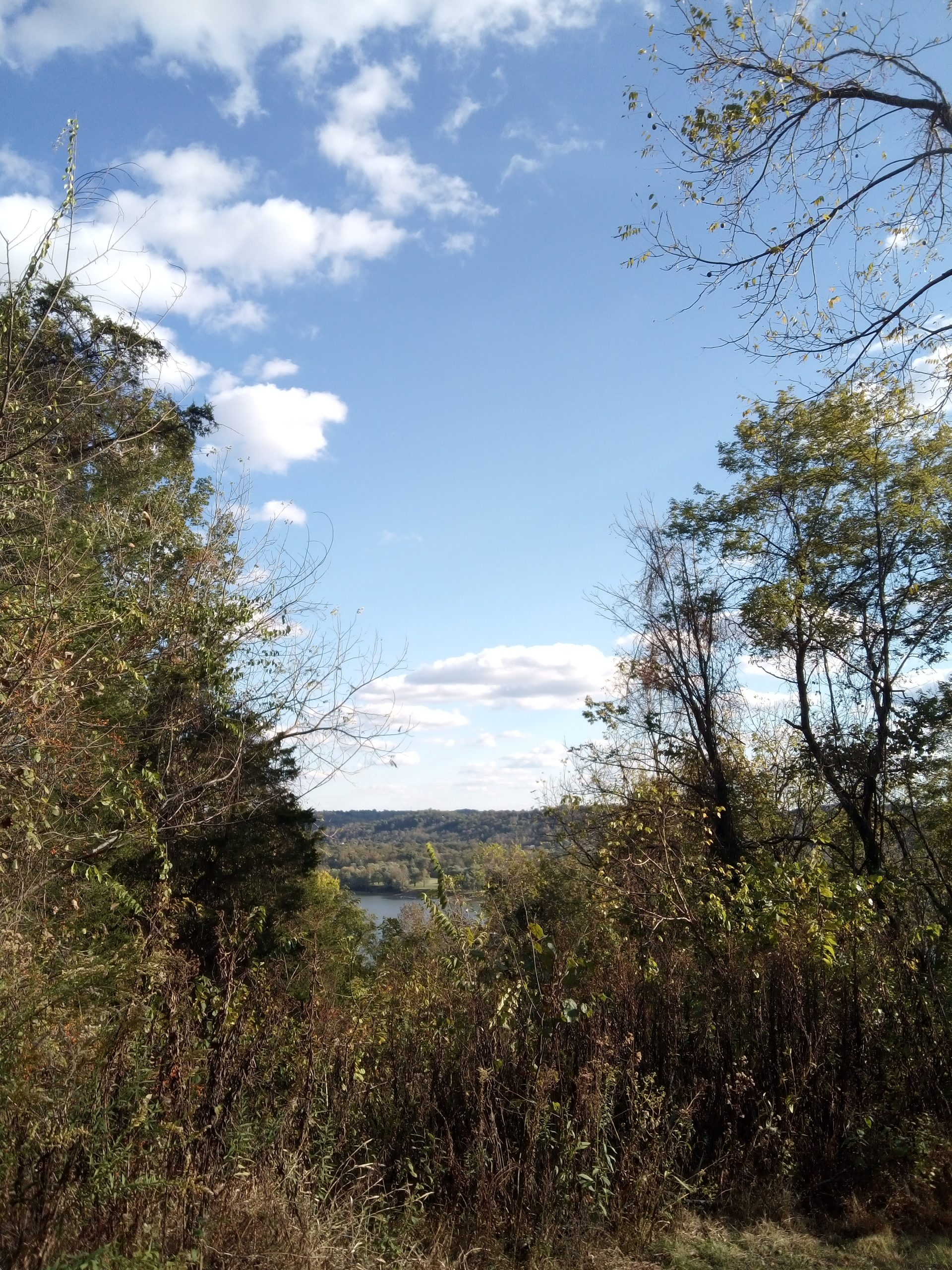 Overlook at Withrow Nature Preserve