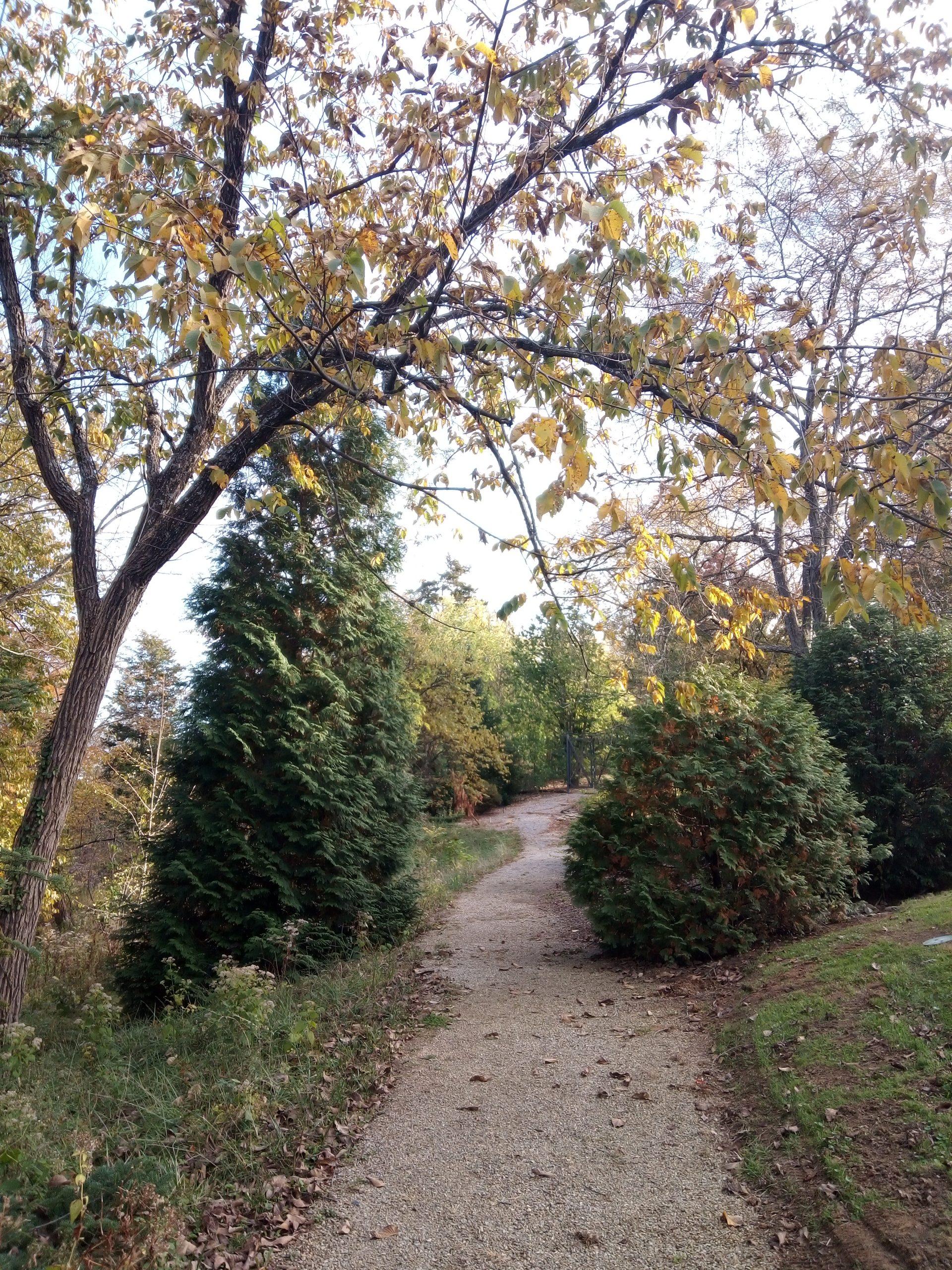 Stanley Rowe Arboretum in Cincinnati, Ohio