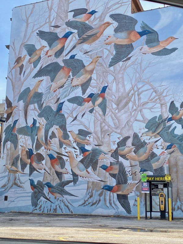 Cincinnati mural of birds