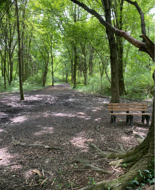 Hiking trails at Summit Park in Blue Ash