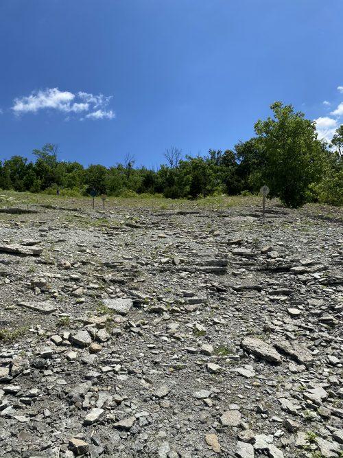 Trammel Fossil Park in Cincinnati, Ohio