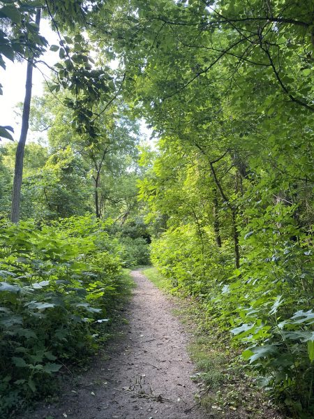 Kelley Nature Preserve in Cincinnati, Ohio