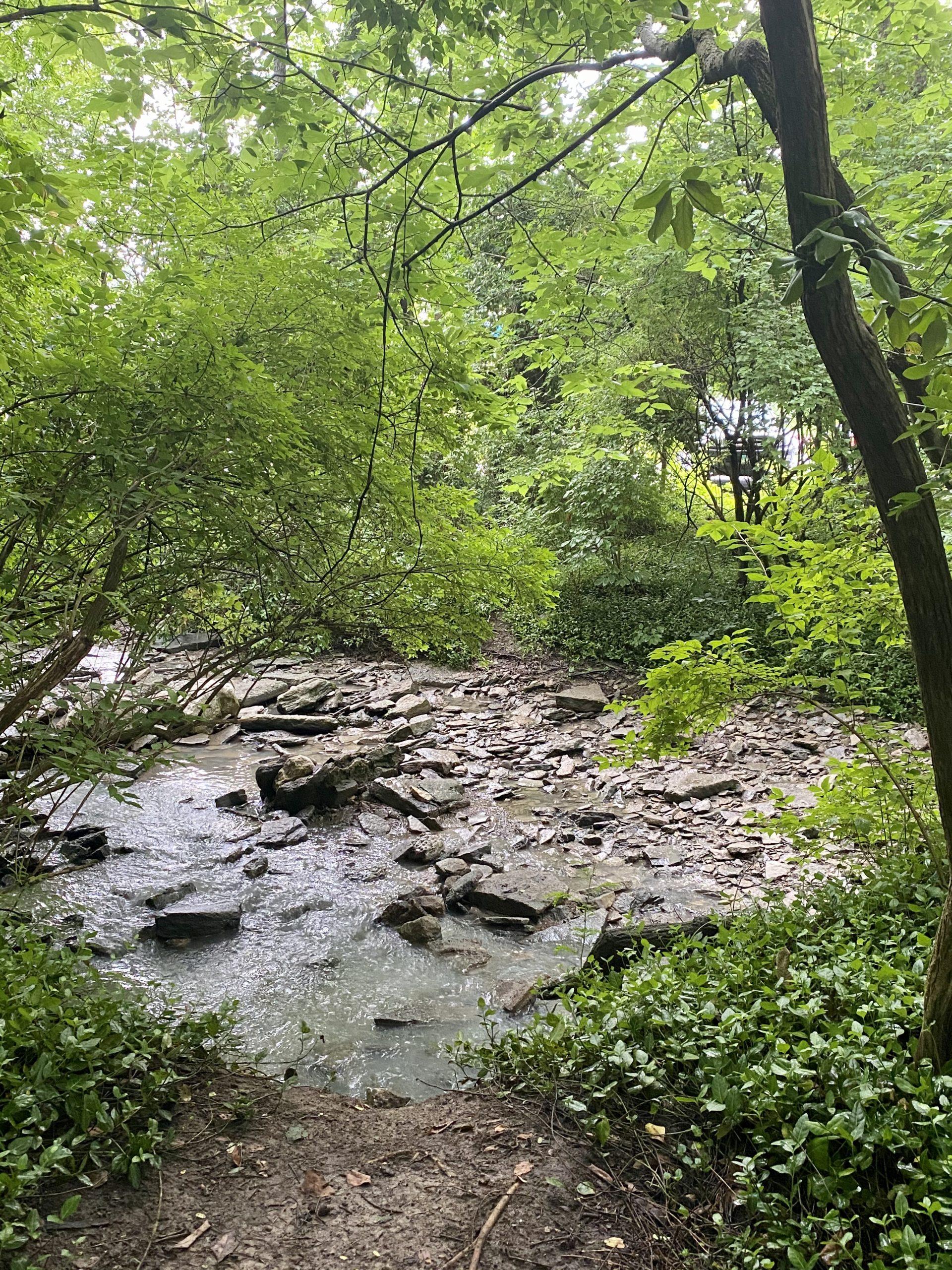 East Loveland Nature Preserve