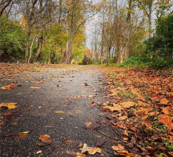 The 17 Best Running Trails in Cincinnati
